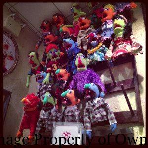 FAO muppet shop