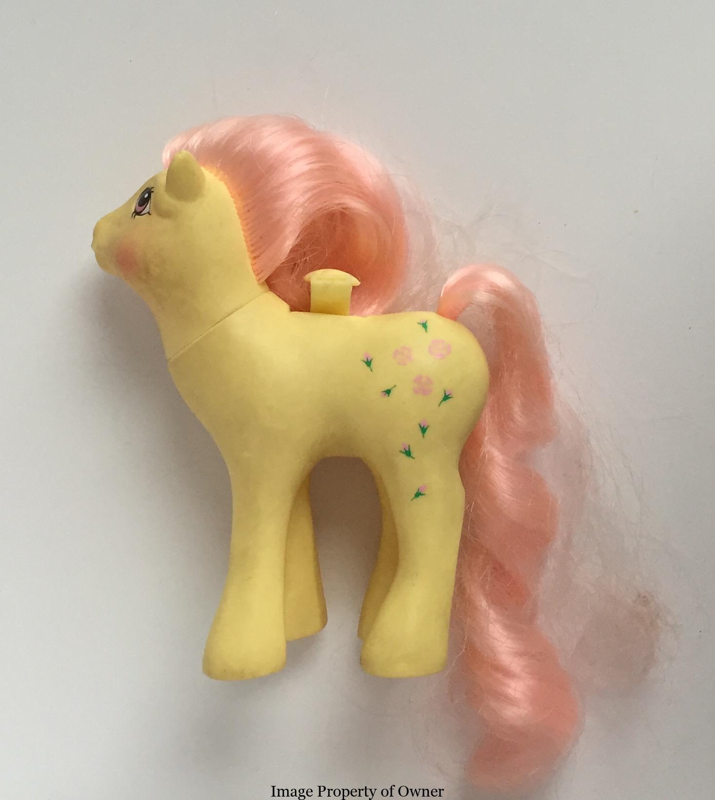 Flutter Pony Rosedust year 4