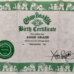 Cabbage Patch Kids Wednesday: CPK Adoption Papers